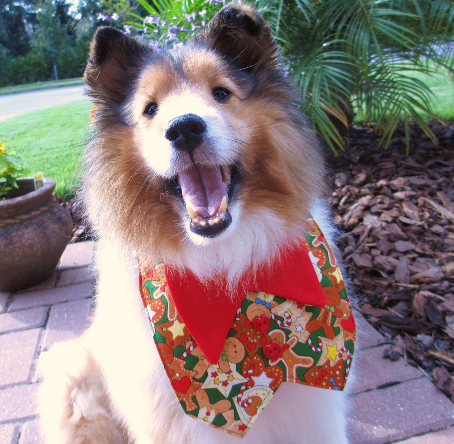 30 Extraordinary Christmas Pet Clothes and Accessories ...