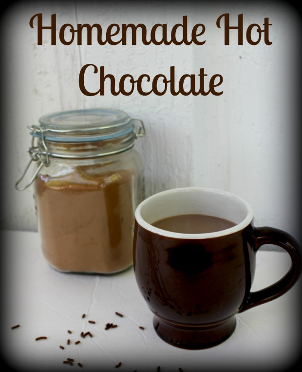 17 Great Hot Chocolate Recipes for Christmas that Your Family Will Love (10)