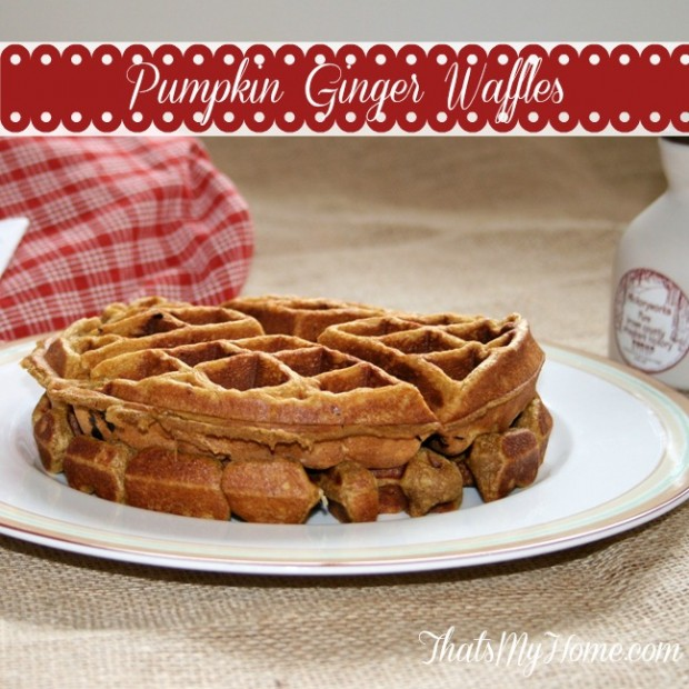 20 Great Waffle Recipes Perfect for Holiday Breakfast (20)