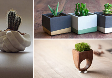 25 Cool and Handmade Planter Designs - wooden, vase, Succulent, stone, smooth, set, reclaimed, porcelain, Plants, Planter, plant, modern, hanging, handmade, glass, garden, ecology, ecological, eco-friendly, design, decor, ceramic, bottle