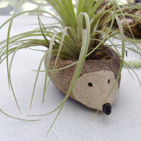 25 Cool and Handmade Planter Designs (14)