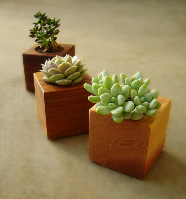 25 Cool and Handmade Planter Designs (15)