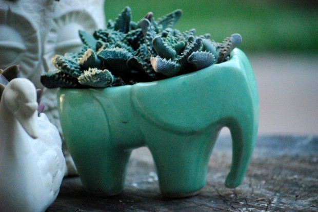 25 Cool and Handmade Planter Designs (18)