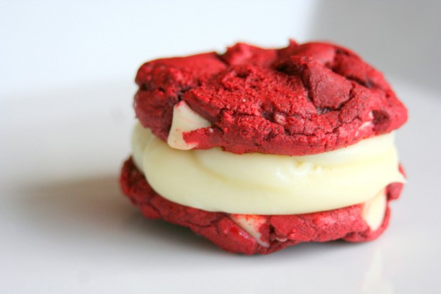 Tasty Cookies Suitable for all Festivities (9)