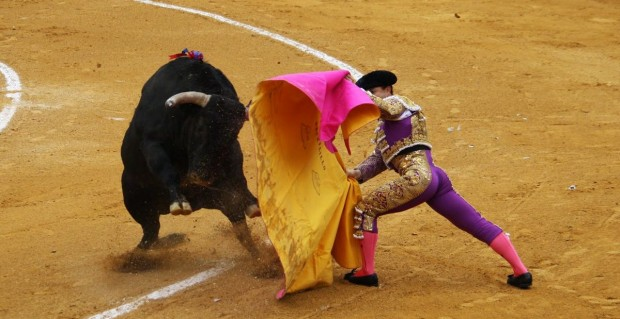 bullfighting_madrid