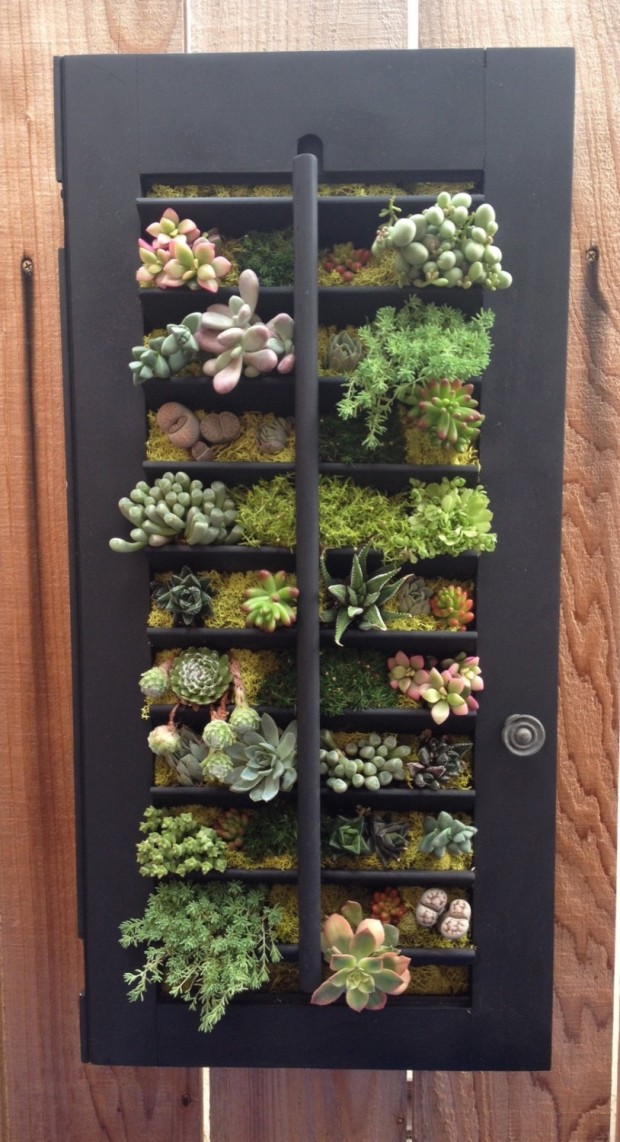 15 Natural and Handmade Living Succulent Decorations (12)