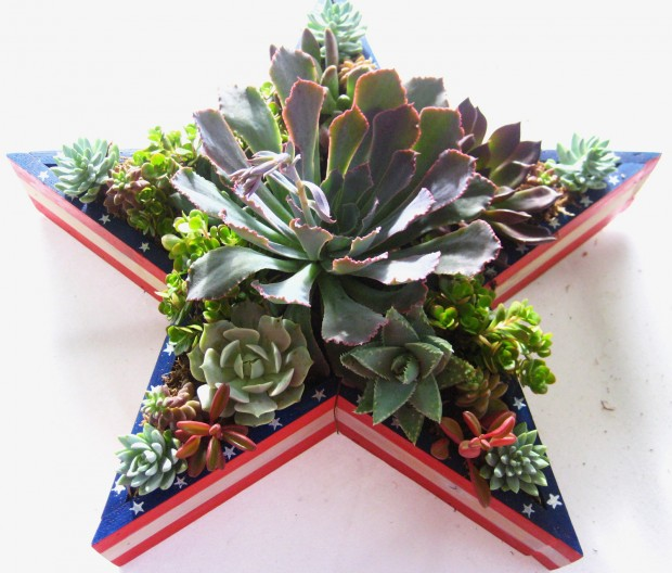 15 Natural and Handmade Living Succulent Decorations (5)