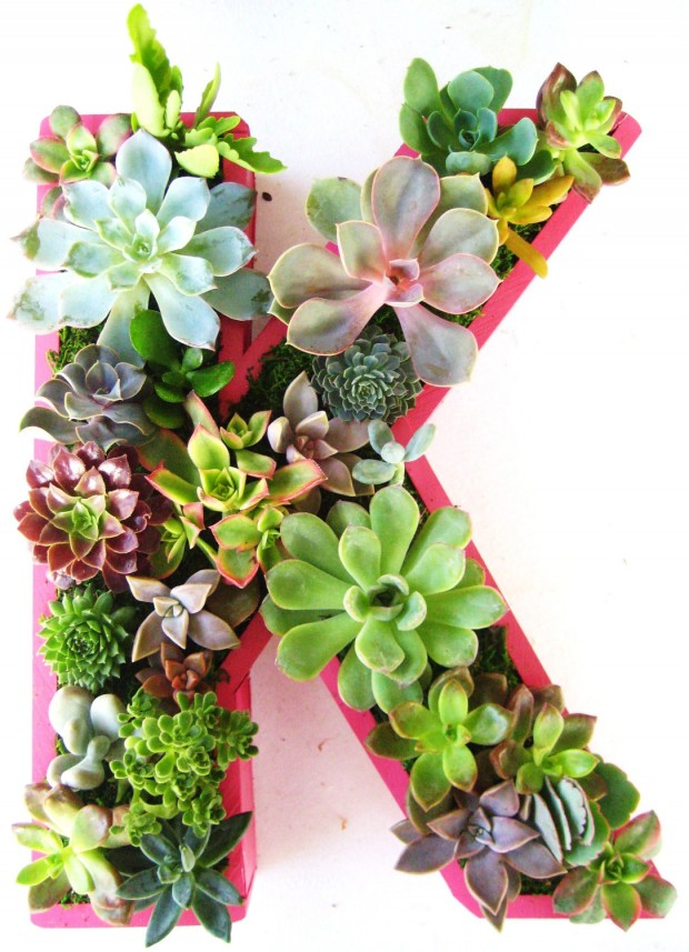 15 Natural and Handmade Living Succulent Decorations (7)