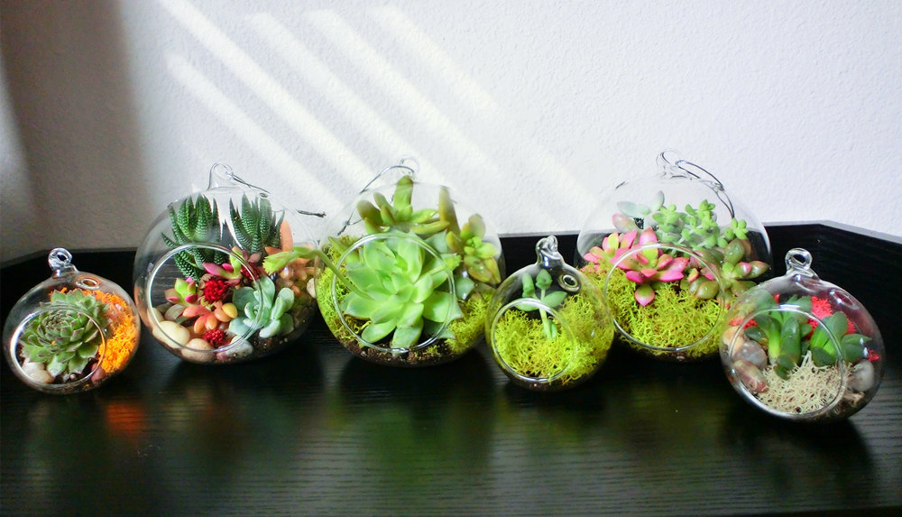 17 Magnificent Terrarium Spring Decorations