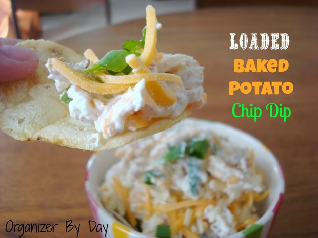 20 Delicious Appetizer and Dip Recipes  (16)