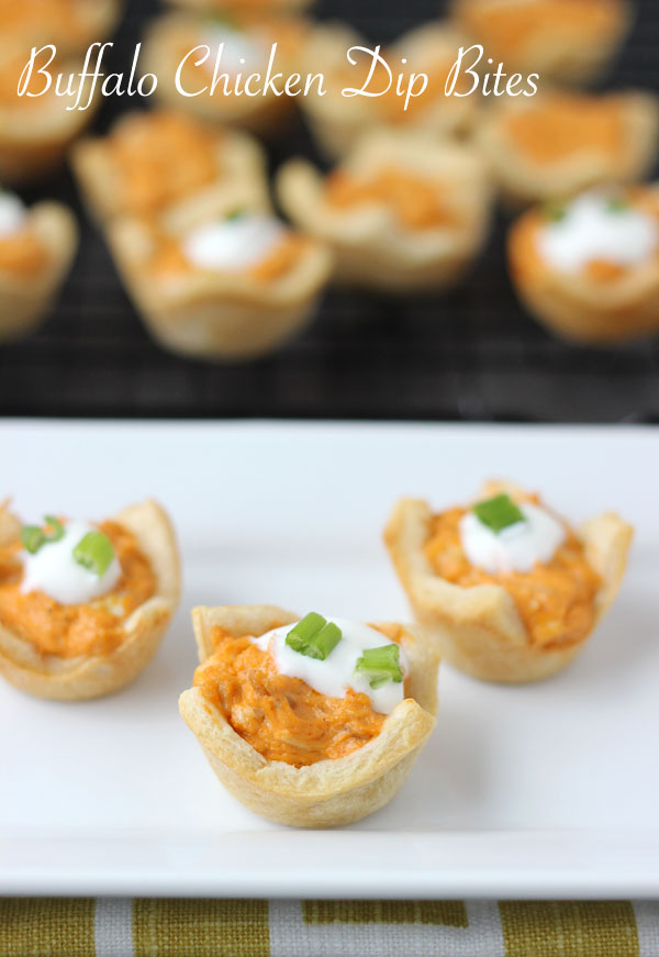 20 Delicious Appetizer and Dip Recipes  (3)