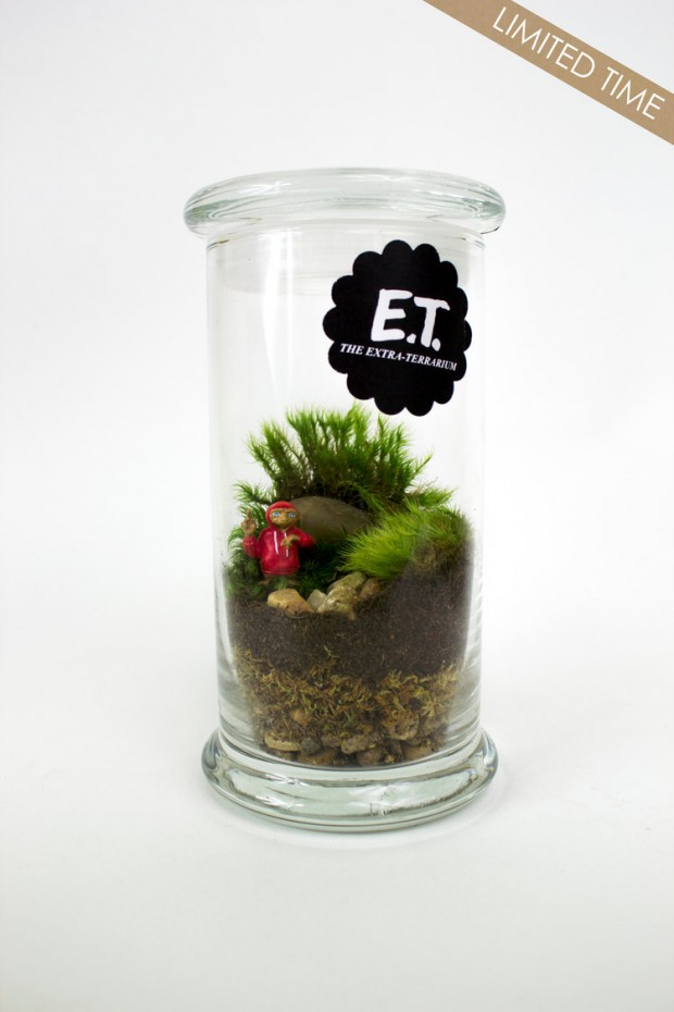 27 Small and Cute Themed Terrariums (13)