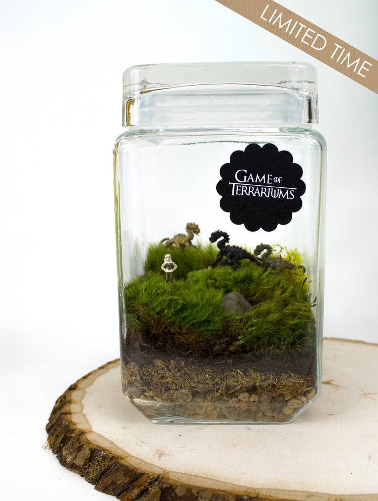 27 small and cute themed terrariums style motivation. Black Bedroom Furniture Sets. Home Design Ideas