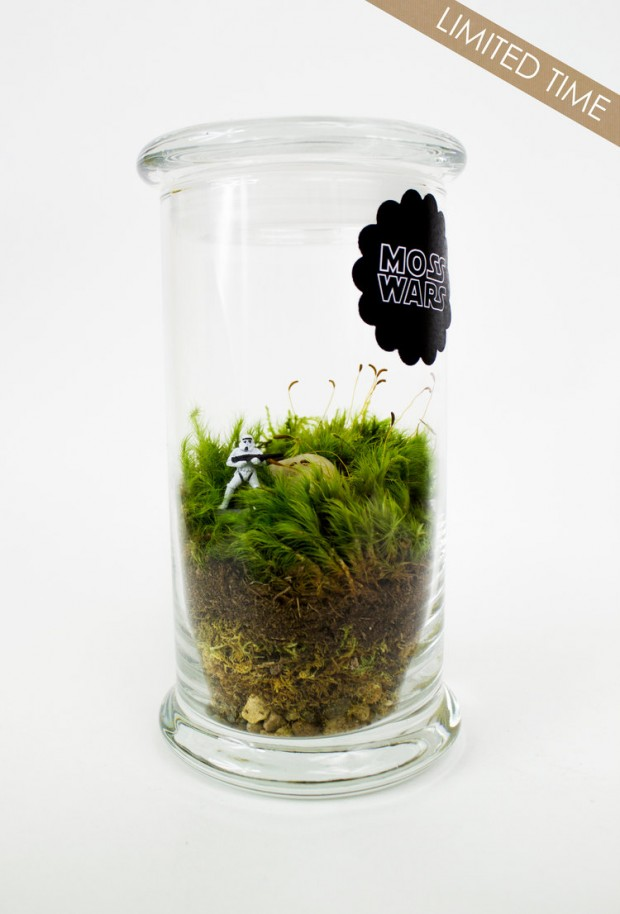 27 Small and Cute Themed Terrariums (19)
