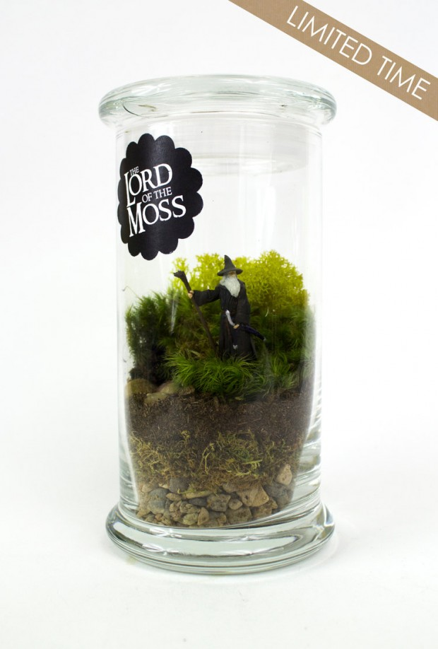 27 Small and Cute Themed Terrariums (20)