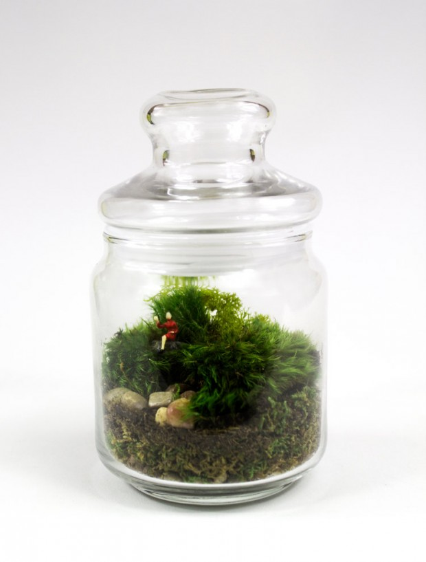 27 Small and Cute Themed Terrariums (21)