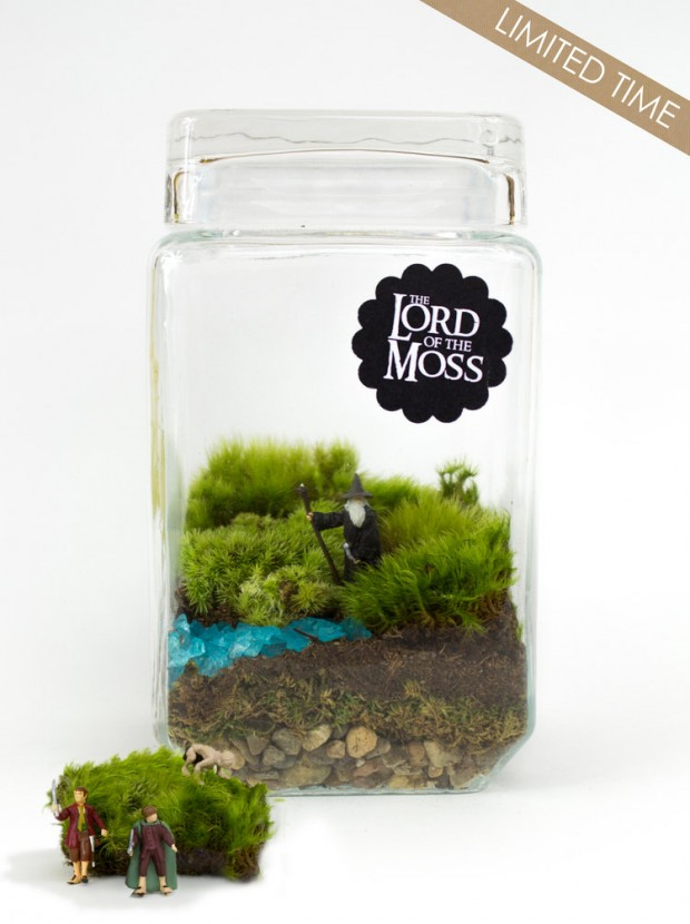 27 Small and Cute Themed Terrariums (3)
