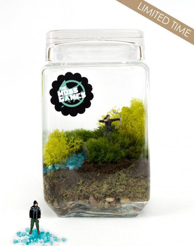 27 Small and Cute Themed Terrariums (6)