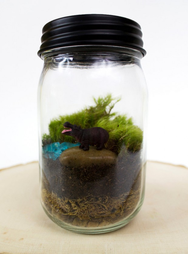27 Small and Cute Themed Terrariums (9)