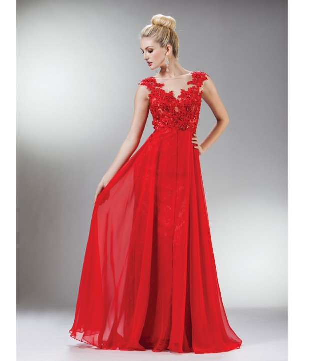 20 Elegant Evening Gowns  (16)