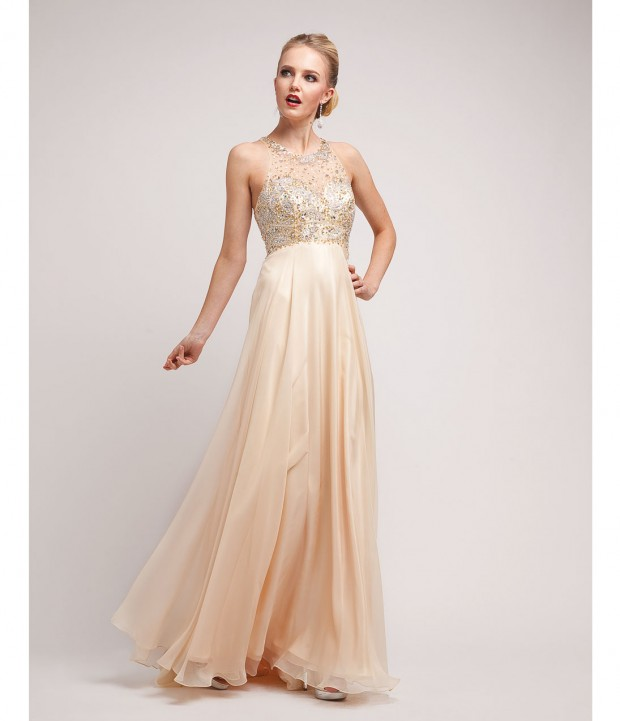20 Elegant Evening Gowns  (7)
