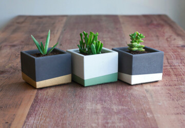 15 Astounding Handmade Modern Planter Designs - wooden, Succulent, sharp, shape, pot, Planter, plant, Natural, modern, holder, handmade, garden, flowerpot, Flower, decoration, concrete, cactus, block