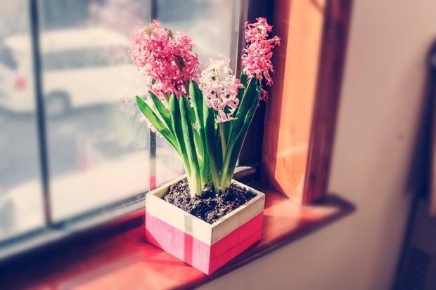 17 Cuter and Easy DIY Home Decor Projects in Spring Spirit (13)