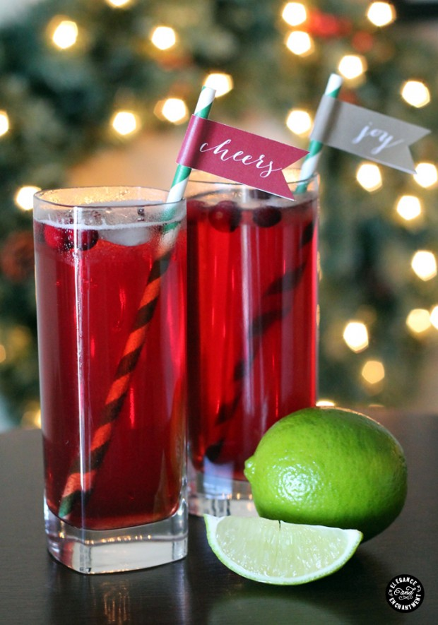19 Amazing Tips and DIY Ideas for Throwing The Best Holiday Party Ever