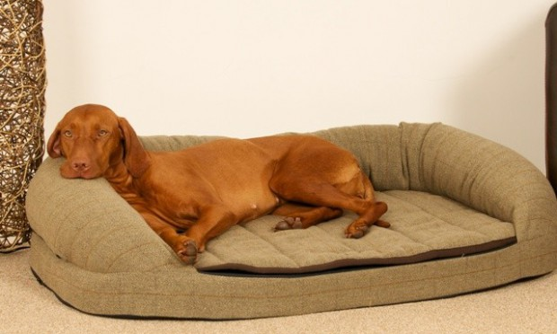 Country_Green_Tweed_Dog_Bed