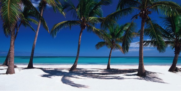 Tips for Your Holidays in Punta Cana (The Best Punta Cana Resorts, 5 Star Hotels)