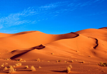 Top 10 Places To Visit in Africa - travel, places to visit in Africa, places to visit, africa