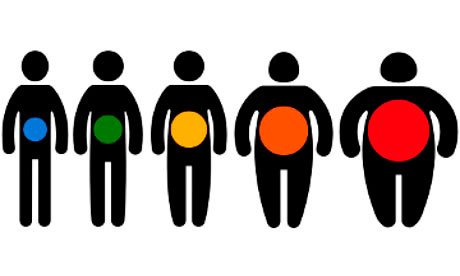 Comorbidity Disorders Associated with Obesity
