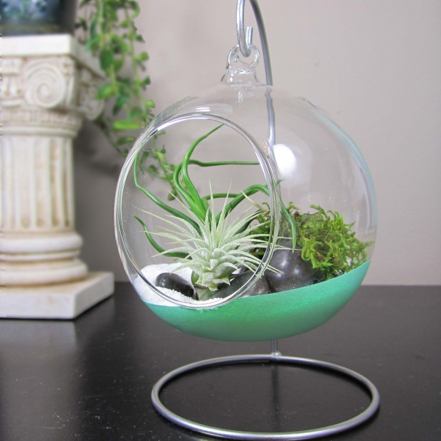 How to Make Terrarium: 18 Great DIY Ideas