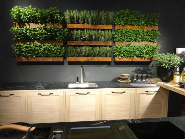 Creative Ideas to Make a Greener Home