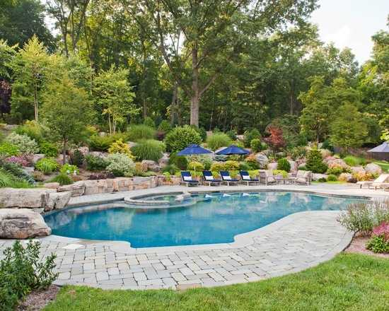 landscaping around pool area pool design ideas back yard landscaping around a pool when chosen