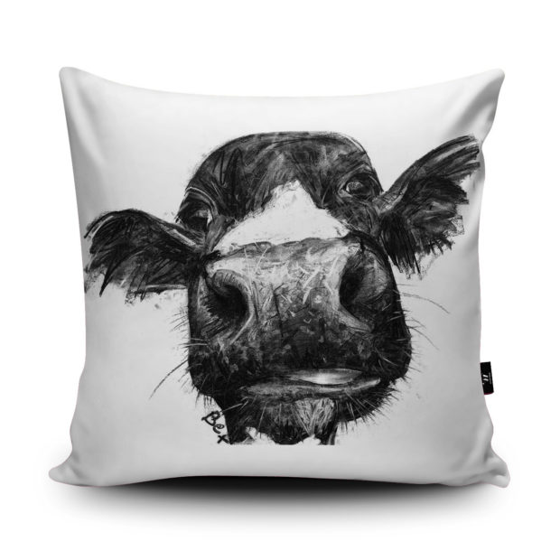 16 Amusing Decorative Pillow Designs That Make The Perfect Gifts (13)