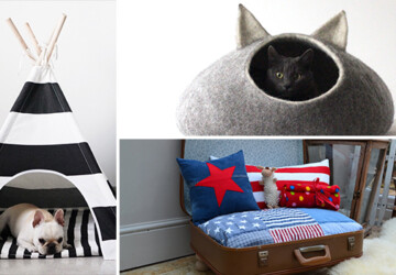 17 Cute Pet Bed Designs That Will Spoil Our Furry Friends - shelf, rabbit, puppy, pets, Pet, mouse, kitty, kitten, house, hamster, guinea pig, furniture, dog, cave, cat, bed