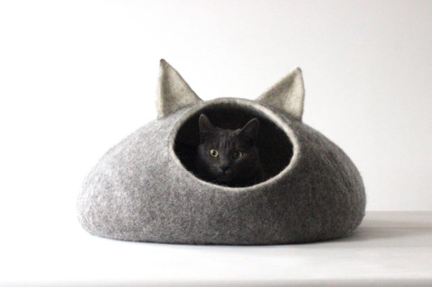 17 Cute Pet Bed Designs That Will Spoil Our Furry Friends (3)