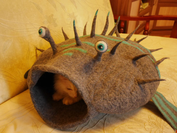 17 Cute Pet Bed Designs That Will Spoil Our Furry Friends (6)