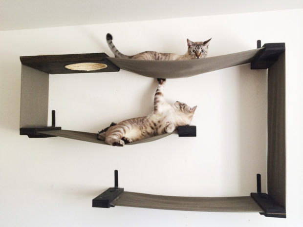 17 Cute Pet Bed Designs That Will Spoil Our Furry Friends (8)