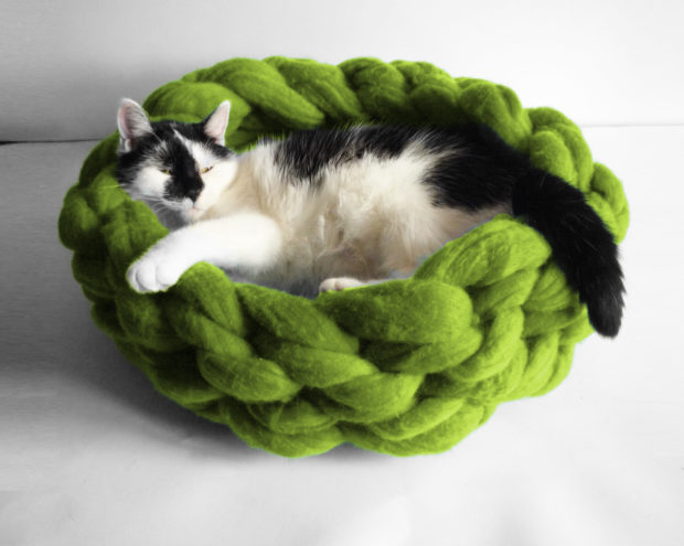 17 Cute Pet Bed Designs That Will Spoil Our Furry Friends (9)