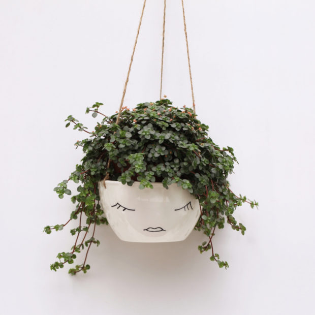 20 Cool Handmade Planter Designs For Indoor And Outdoor Use (15)