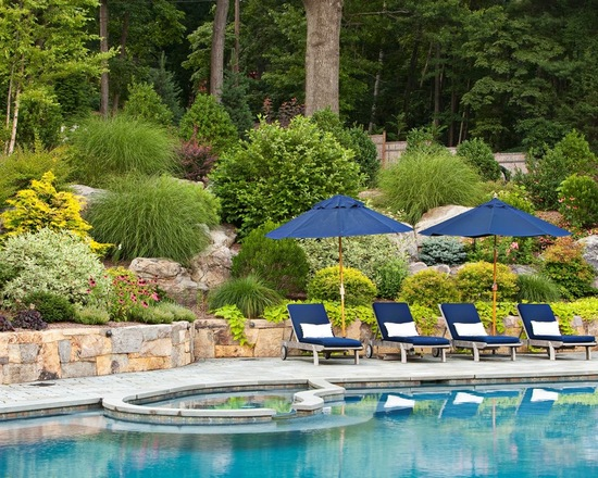 18 Amazing Poolside Landscape Ideas