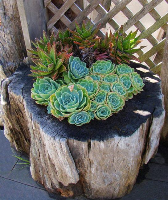 16 DIY Ideas for How to Recycle Tree Stumps for Garden Decor - recycled products, Recycle Tree Stumps for Garden Decor, Recycle Tree Stumps, DIY Recycled Products, diy garden projects, diy garden