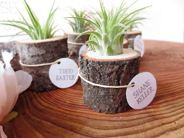 16 DIY Ideas for How to Recycle Tree Stumps for Garden Decor