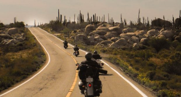 Plan The Perfect Spring Motorcycle Trip