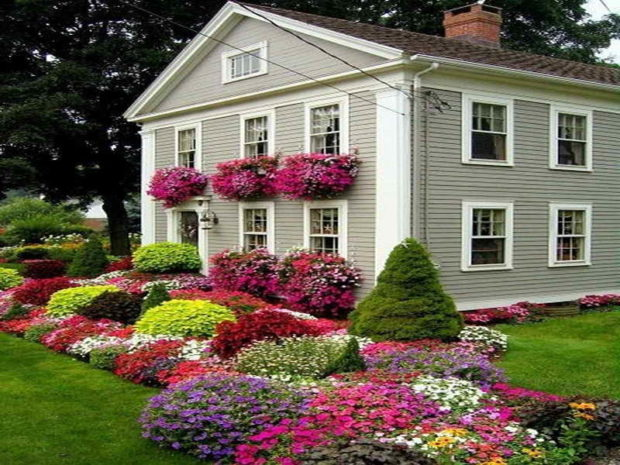 5 Tips for Improving the Appearance of Your Home -