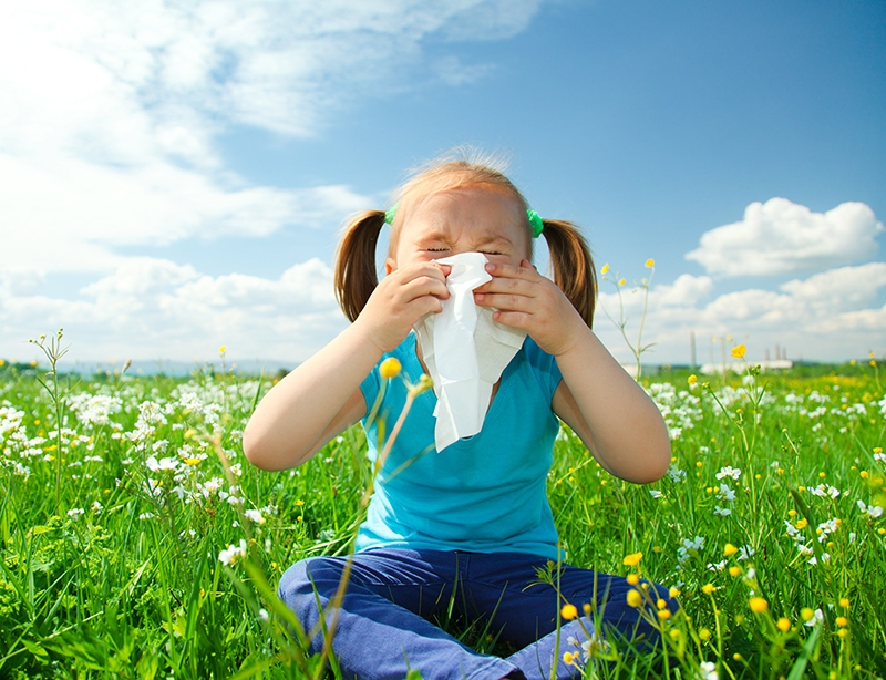 How To Rid Your Home of Common Spring Allergens