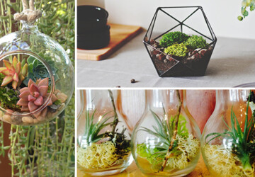 15 Awesome Terrarium Designs That Will Bring Living Decor In Your Home - terrarium, Succulent, Plants, Natural, living decor, living, home, hanging, green, glass, geometric, diy terrarium, diy, decorations, decor