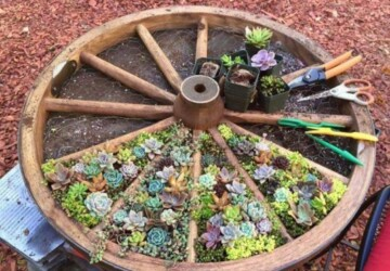 20 Lovely DIY Summer Garden Decorations - Recycle Tree Stumps for Garden Decor, garden decor, diy garden projects, diy garden